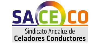 ELECCIONES SINDICALES 20/02/2019