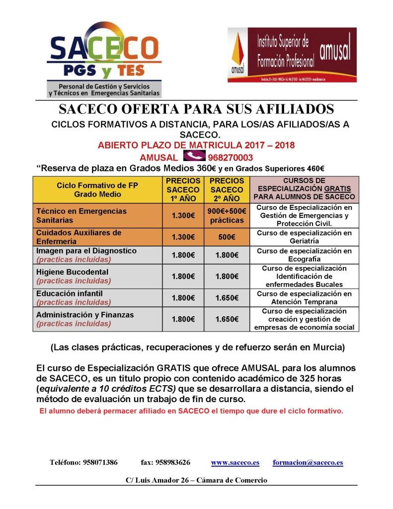 FP TES A DISTANCIA 17-18