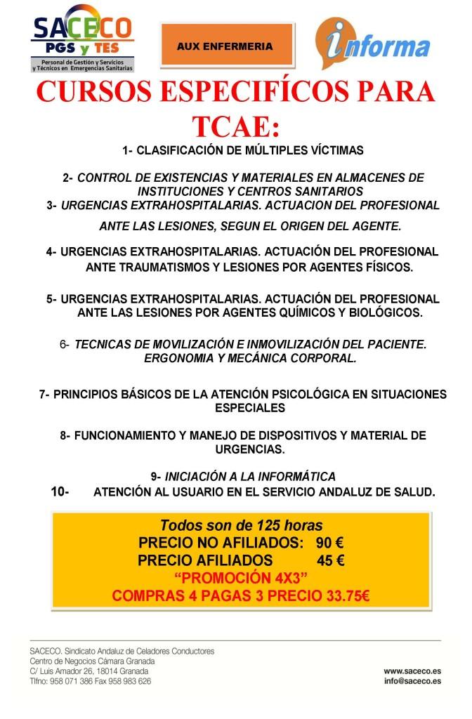 CARTEL CURSOS PARA TCAE