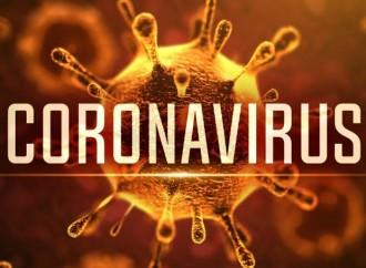 Coronavirus SARS-CoV-2: Información y protocolos asistenciales