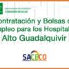 CONVOCATORIA PROCESO SELECTIVO, CONTRATACIONES TEMPORALES APES H. ALTO GUADALQUIVIR