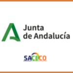 BOLSA ÚNICA  DE LA JUNTA DE ANDALUCÍA